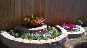 raised flowerbed