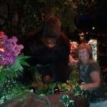 Mom with a Gorilla