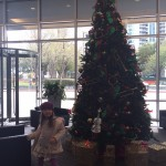 1st floor lobby tree