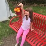 Easter orange hunt