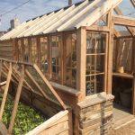 A cool little green house